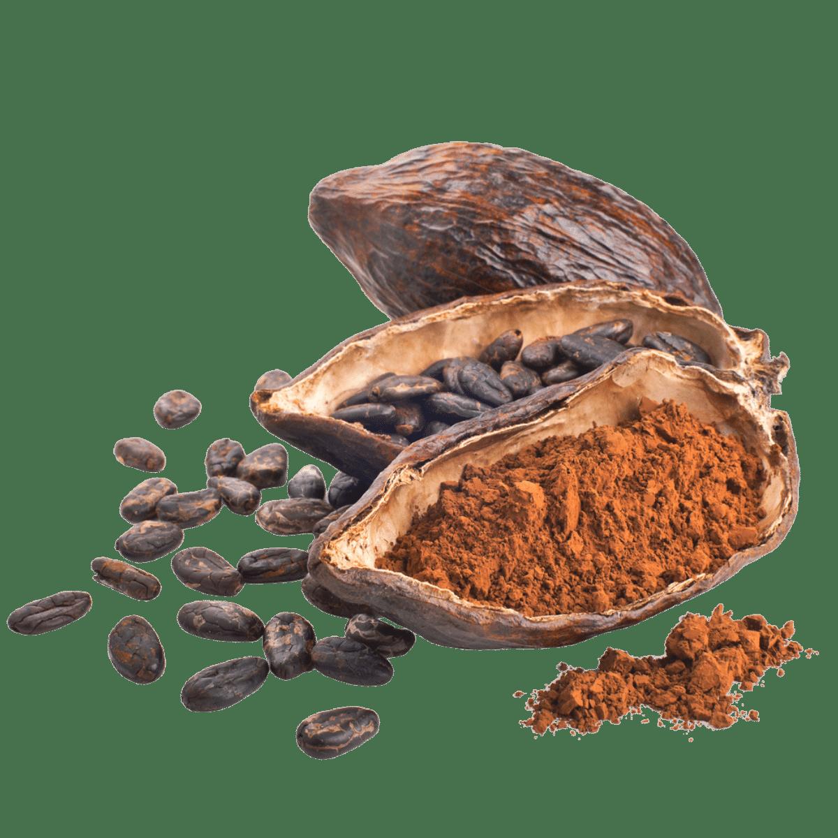 mud\wtr cacao