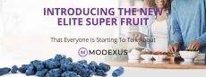 Modexus – The Complete Review